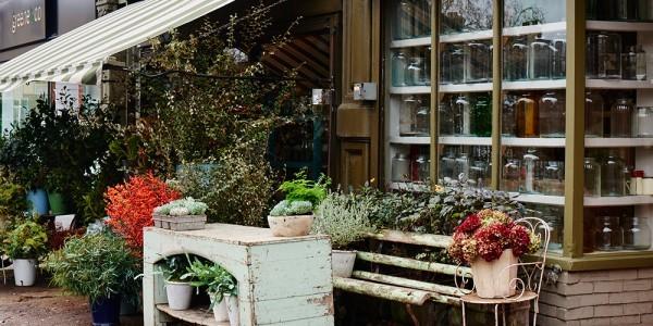 Scarlet and violet flower shop in london
